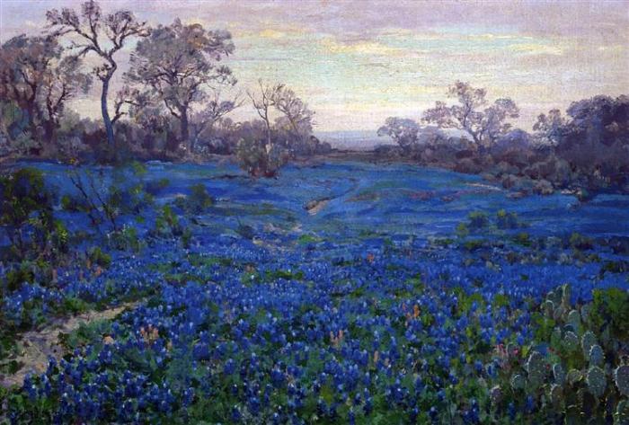 bluebonnets-at-twilight-near-san-antonio-1920.jpg!Large.jpg
