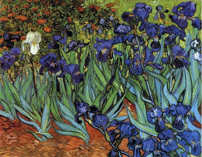 irises-1889.jpg!Large.jpg