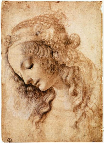 woman-s-head.jpg!Large.jpg